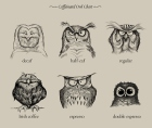 MonkeyWorks Illustration Caffeine Owls